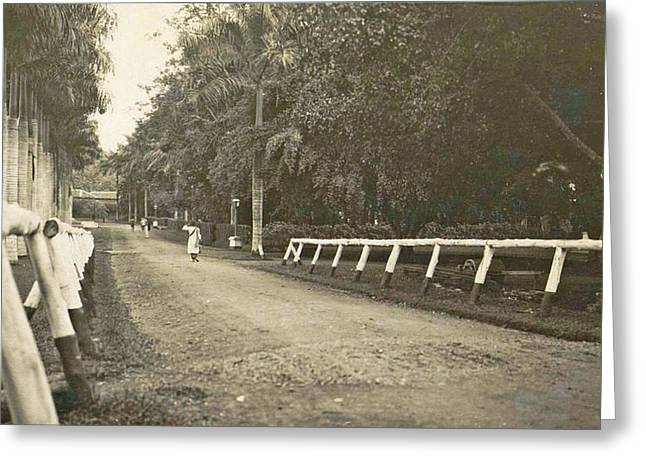 Dutch East Indies, Indonesia, Driveway Helvetia Deli Mij Greeting Card by Artokoloro