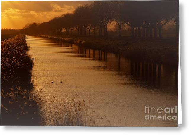 Dutch Landscape Greeting Card