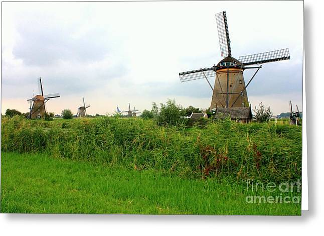 Dutch Landscape With Windmills Greeting Card by Carol Groenen