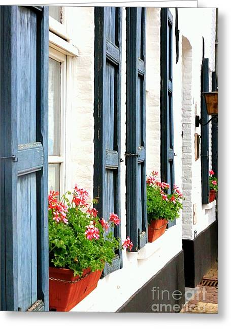 Dutch Window Boxes Greeting Card by Carol Groenen