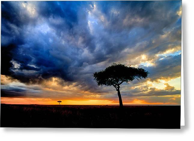 dynamic Mara sky Greeting Card by Mike Gaudaur