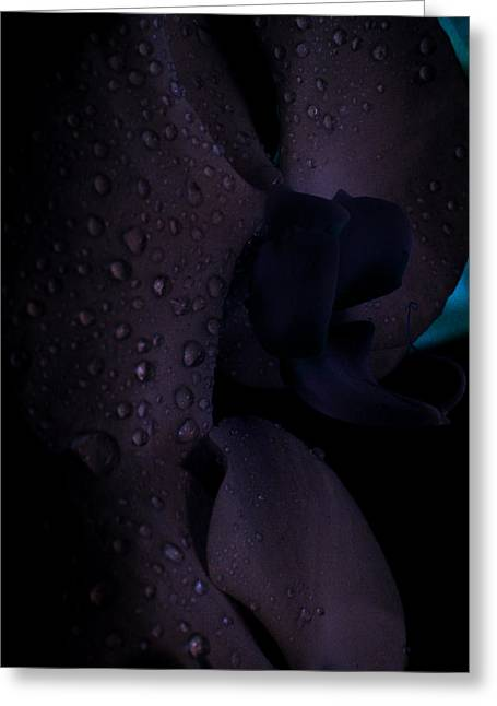 Each Droplet Contains A Wish Greeting Card by Tara Miller
