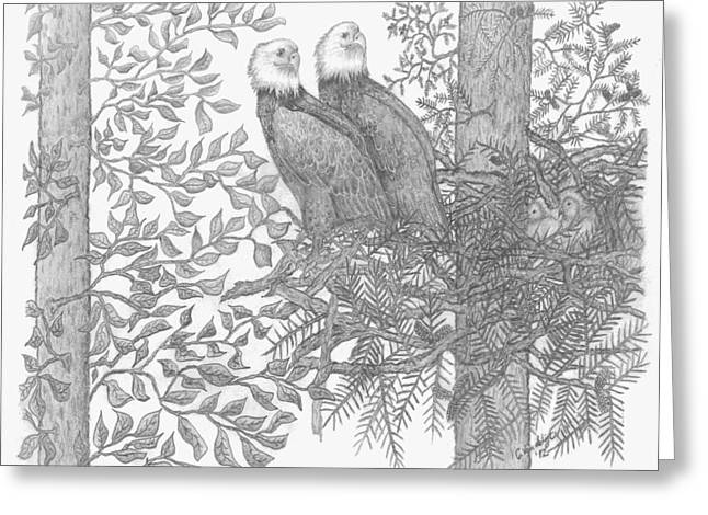 Eagle Family Greeting Card