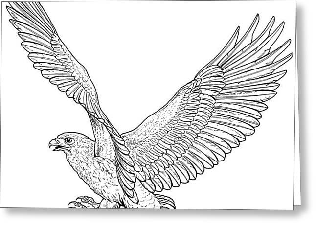 Eagle In Flight Greeting Card by For The Love Of Art