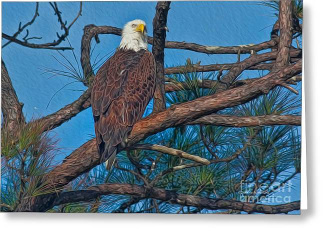 Eagle In Oil Greeting Card by Deborah Benoit