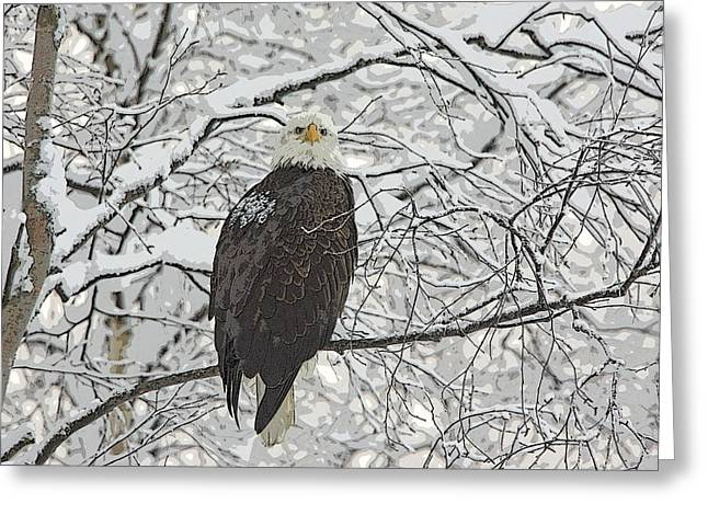 Eagle In Snow- Abstract Greeting Card by Tim Grams