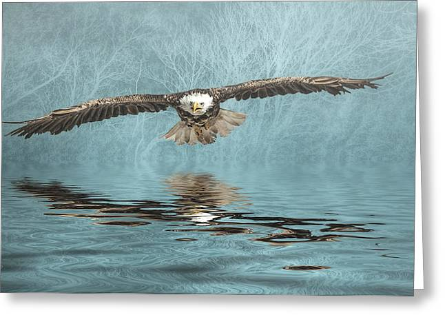 Greeting Card featuring the photograph Eagle On Misty Lake by Brian Tarr
