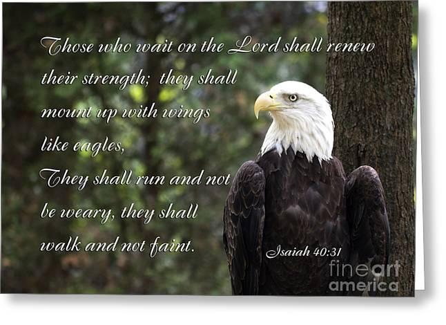 Eagle Scripture Isaiah Greeting Card by Jill Lang
