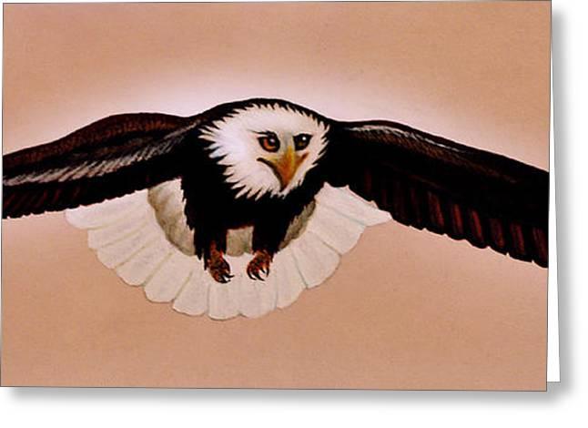 Eagle Stealth Greeting Card by Adele Moscaritolo
