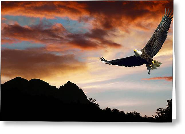 Eagle Sunset Greeting Card