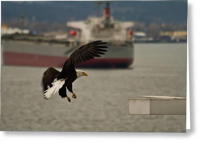 Eagle Vs Ship Greeting Card