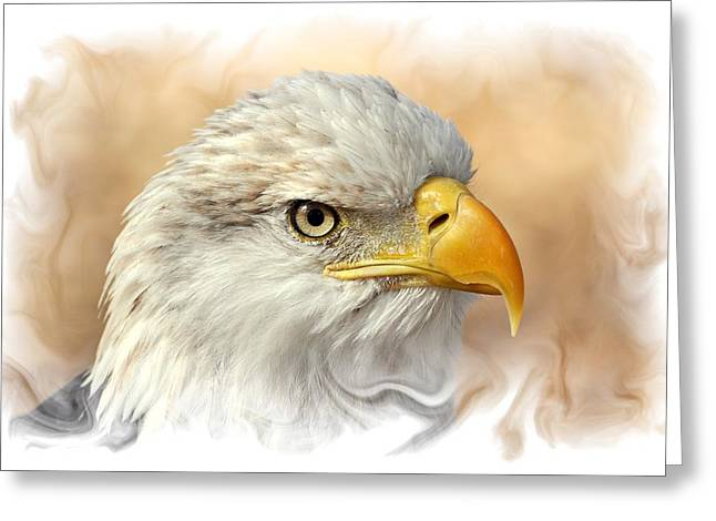 Eagle6 Greeting Card by Marty Koch