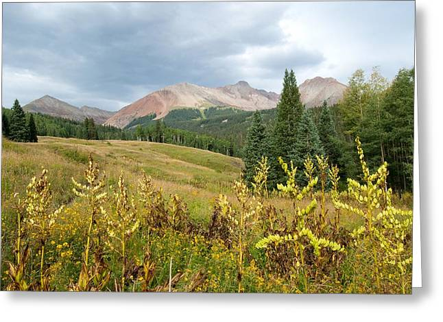 Early Autumn In The San Juans -  Mount Wilson And Wilson Peak Greeting Card by Cascade Colors