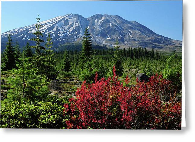 Early Autumn, Lahar, Mount St Greeting Card