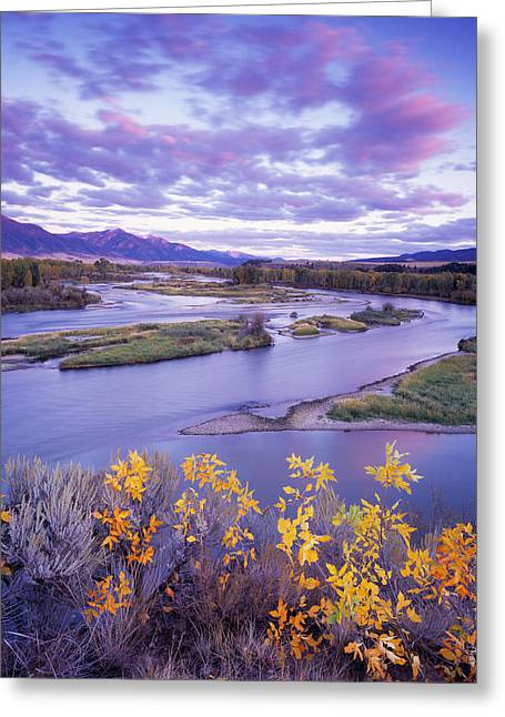 Early Autumn Greeting Card by Leland D Howard
