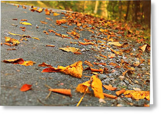 Greeting Card featuring the photograph Early Autumn Road by Candice Trimble