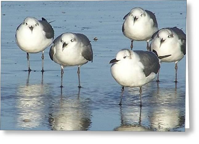 Early Bird Greeting Card by Kimberly Elliott