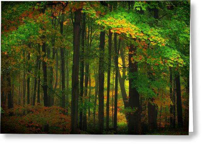 Early Fall 4 Greeting Card