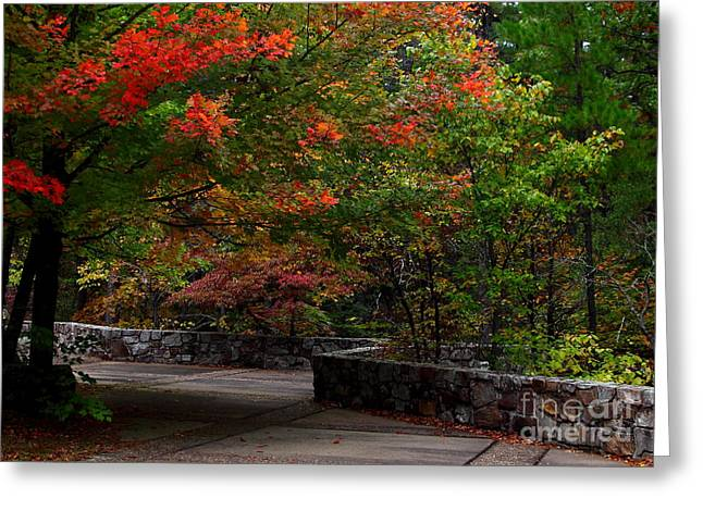 Early Fall At Talimena Park Greeting Card