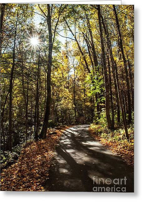 Early Fall On Roaring Fork Road Greeting Card by Debbie Green