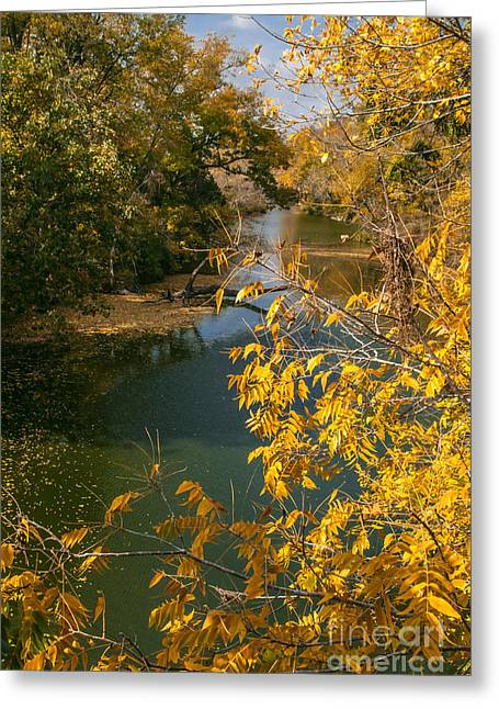 Early Fall On The Navasota Greeting Card