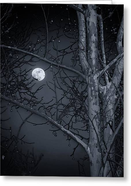 Greeting Card featuring the photograph Early Moon In Black And White by Micah Goff