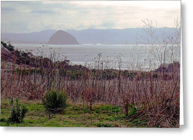 Greeting Card featuring the photograph Morro Bay Early Morning by Walter Fahmy
