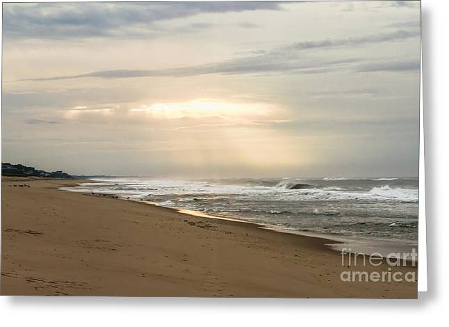 Early Morning By The Shore  Greeting Card