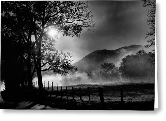 Early Morning Drive. Greeting Card