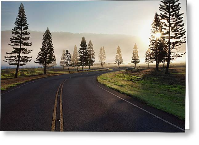 Early Morning Fog On Manele Road Greeting Card by Jenna Szerlag