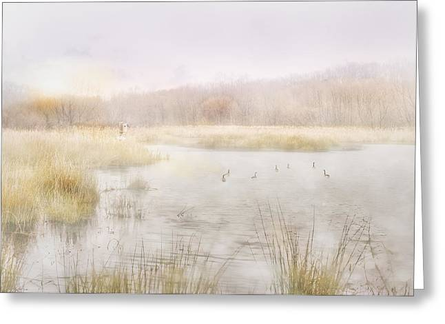 Early Morning Geese Greeting Card by Brent Craft