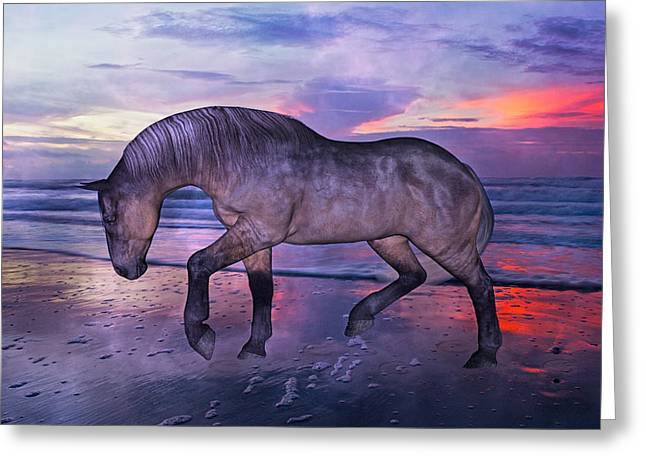 Early Morning Hours Greeting Card by Betsy Knapp