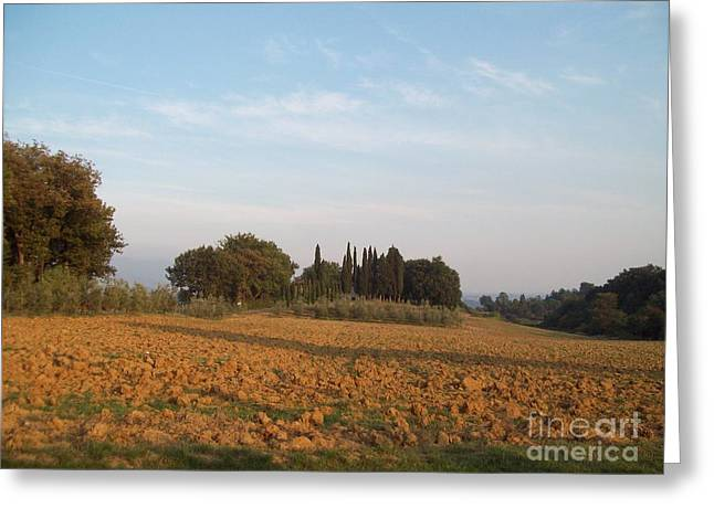 Early Morning In Loppiano Greeting Card