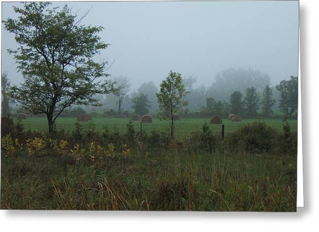 Early Morning In The Country Greeting Card by Margaret McDermott