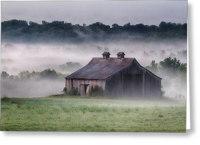 Early Morning In The Mist Standard Greeting Card