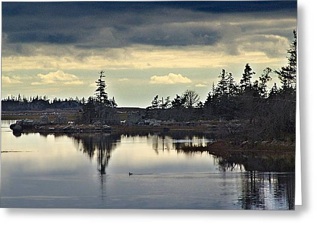 Early Morning In The Salt Marsh Greeting Card by George Cousins