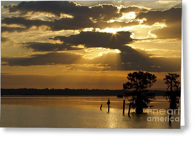 Early Morning Light At Lake Deutrive Greeting Card by Kelly Morvant