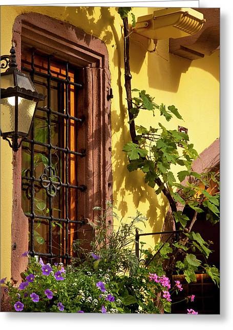 Early Morning Light On Window Greeting Card by Brian Jannsen
