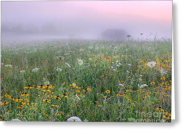 Early Morning Meadow Greeting Card by Wanda Krack