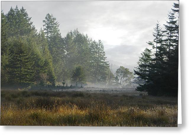 Early Morning Mist Greeting Card