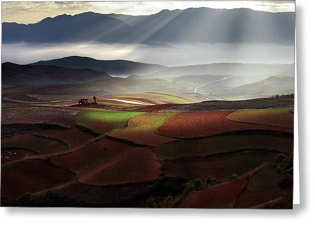 Early Spring On Red Land Greeting Card