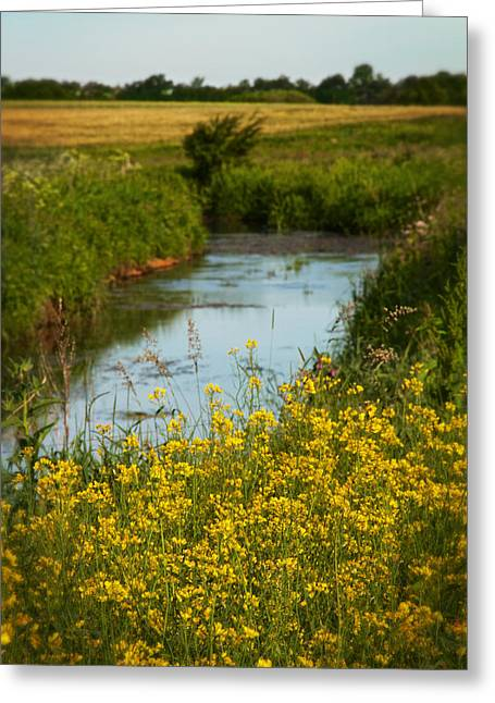 Early Summer Morning Greeting Card