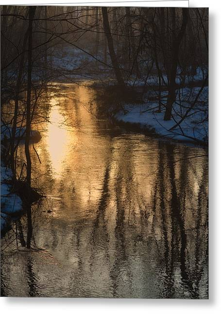 Early Winter Morning Greeting Card by Karol Livote