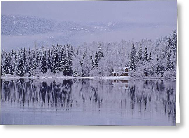 Early Winter Snow Greys The Trees Greeting Card by Leanna Rathkelly