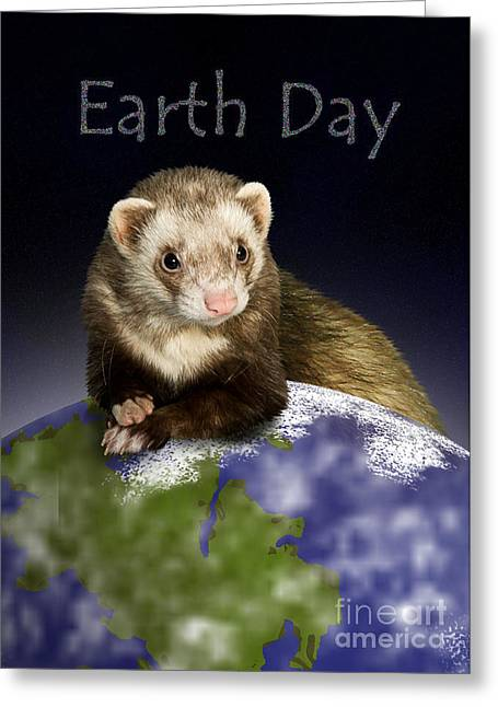 Earth Day Ferret Greeting Card by Jeanette K