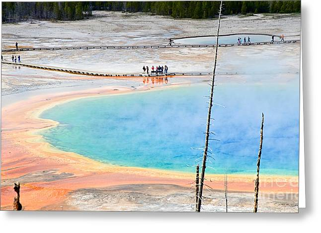 Earth Rainbow - Overhead View Of Grand Prismatic Spring In Yellowstone National Park.  Greeting Card