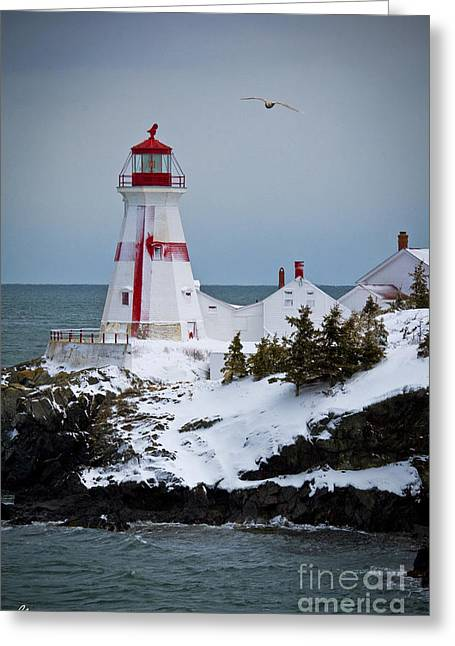 East Quoddy Head Lighthouse Greeting Card by Alana Ranney