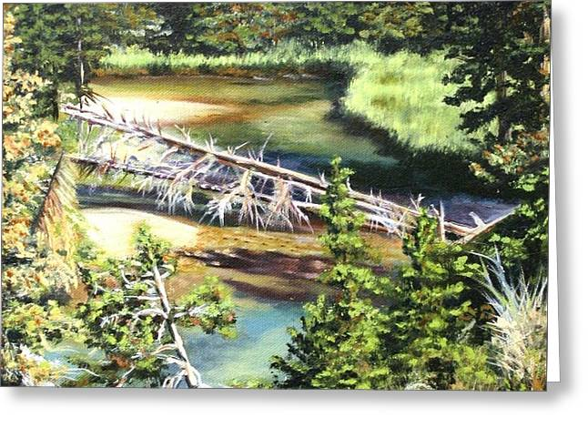 East Rosebud Inlet Stream Greeting Card by Patti Gordon
