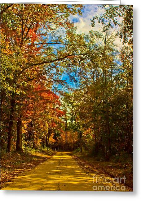 East Texas Back Roads Hdr Greeting Card