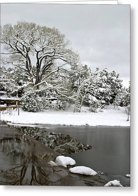 East Verde Winter Crossing Greeting Card
